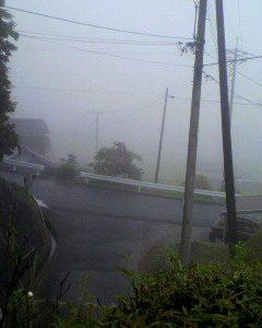 すごい雨でしたね。